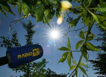 Lato w pełni. Sprawdź, jak mądrze korzystać ze słońca