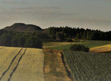 Jakie piękno regionu odkrywaliście w tym tygodniu? Były lasy, pola i moczary. To Wakacyjny Album Radia 90!