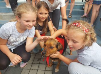 """""""Zwierzo-czwartki"""" w Pszowie, czyli dzieciaki uczą się jak traktować zwierzaki [FOTO]"""