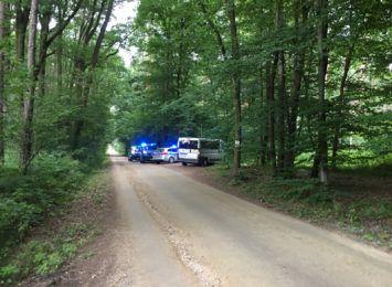 Poszukiwania 59-latka w Rybniku. Mężczyzna zgubił się w lesie