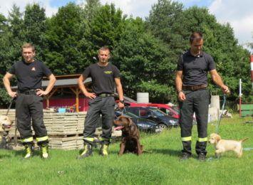 Psy i strażacy - czyli Specjalistyczna Grupa Poszukiwawczo-Ratownicza w Jastrzębiu-Zdroju