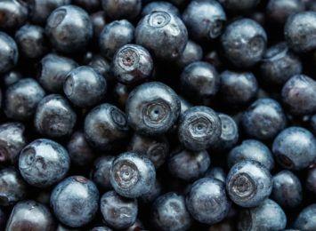 Sezon na borówki amerykańskie w pełni. Jakie właściwości mają te owoce?