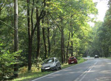 Grzybiarze uniemożliwili wjazd straży do pożaru lasu. Drogi zablokowane samochodami!
