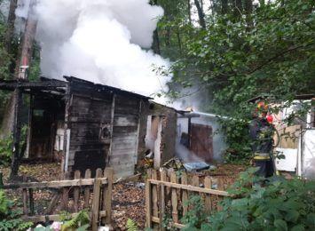 Akcja strażaków przy Podhalańskiej w Jastrzębiu. Co tam się stało?
